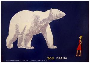 Zoo - Praha Polar Bear