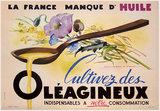 Oleagineux La France Manque d'Huile