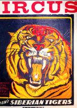 Circus Siberian Tigers