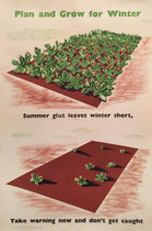 Plan and Grow For Winter (Summer Glut Leave Winter Short)