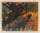 Animaux Savage VI - Gorille & Hippopotame (Afrique)