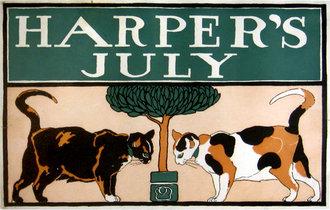 Harper's July Cats
