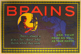 Mather Series: Brains