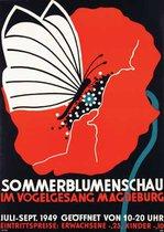 Sommer blumen schau - Magdeburg (Summer Bloom Show)
