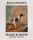 Buchanan's Black and White Scotch Whisky (English Pointer)
