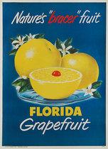 Florida Grapefruit Nature's Bracer Fruit
