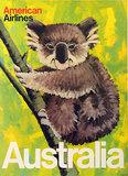 American Airlines Australia (Koala Bear)
