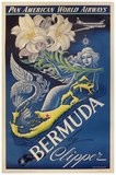Pan Am Bermuda (Lily & Mermaid)