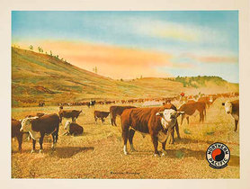 Northern Pacific Railway Montana Roundup (Cattle)