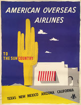 American Airlines to The Sun Country