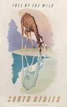 South Africa (Giraffe)