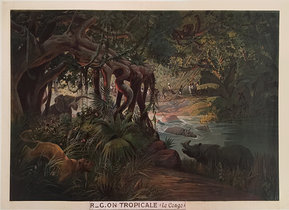 Tropicale Le Congo