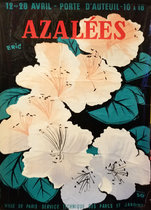 Azalees- Glossy Variant