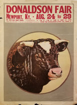 Donaldson Fair - Bull