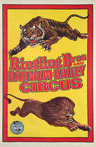 Ringling Bros and Barnum and Bailey Circus (Tiger and Lion)
