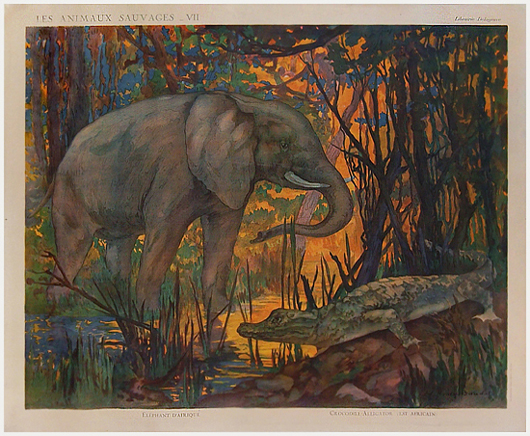 Animaux Savage VII - Elephant  D'Afrique & Crocodile Alligator