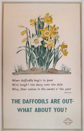London Underground - The Daffodils Are Out