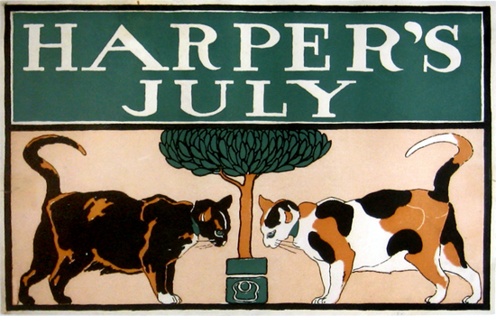 Harper's July Cats