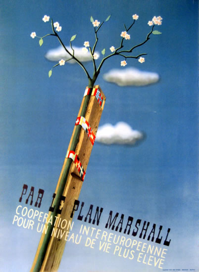 ERP Marshal Plan (Branch and Clouds)