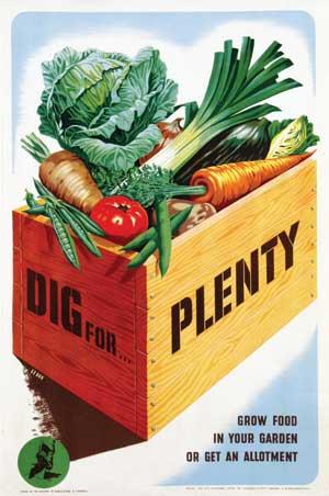 Dig For Plenty