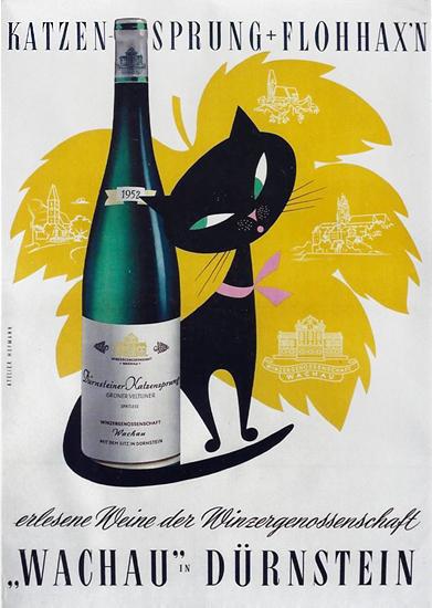 Wachau Durnstein Katzen Sprung Flohhaxn
