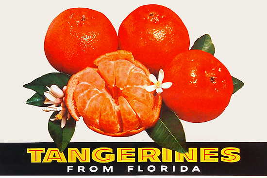Tangerines from Florida