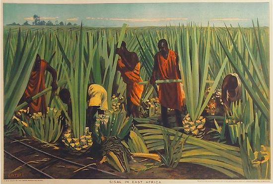 Empire Marketing Board- Sisal in East Africa