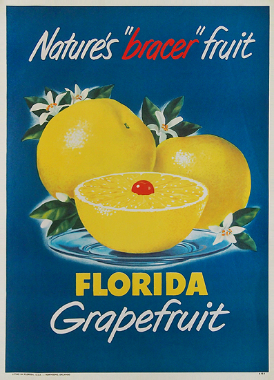 Florida Grapefruit Nature's Bracer Fruit