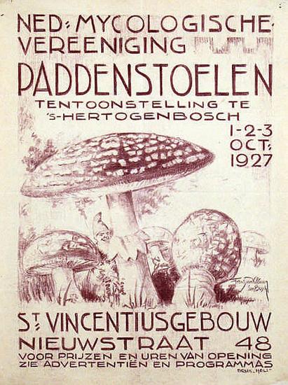 Paddenstoelen (Mushrooms)