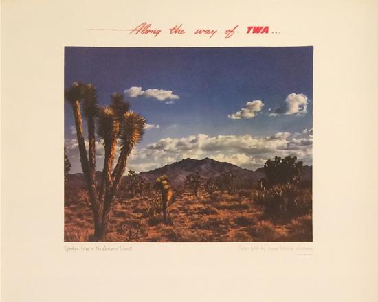 TWA - Joshua Tree, AZ