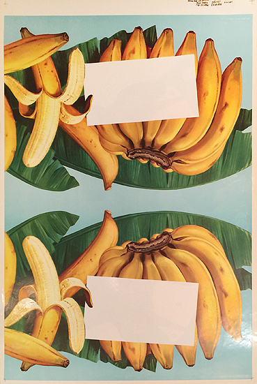 American Die Cut- Fruit Bananas