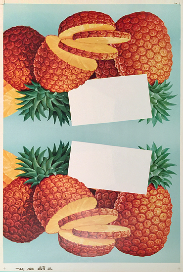 American Die Cut- Fruit Pineapple